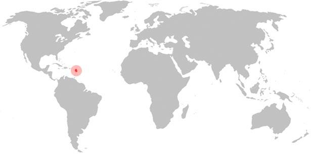 Weltkarte Avicularia versicolor